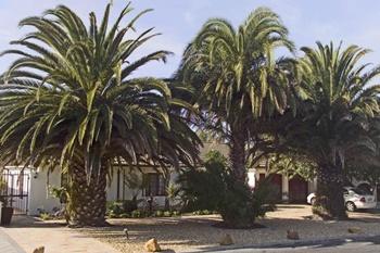 South Africa Guesthouses Hotels Atlantic Seaside Holidayhomes Villas