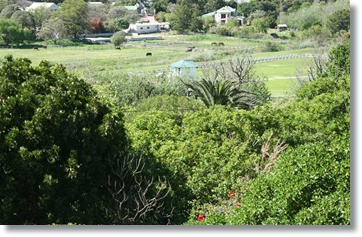 Cape Town Holiday Homes Hout Bay Villas