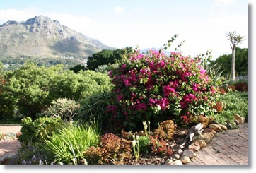 Hout Bay Apartments Hotels South Africa Loft