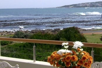 South Africa Villas Houses Hermanus Holidayhome Guesthouse