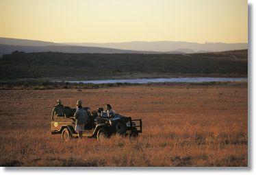 Bushmans Kloof Cape Town Safari West Coast