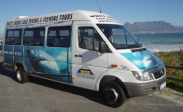 Cape Town Shark Diving Tours
